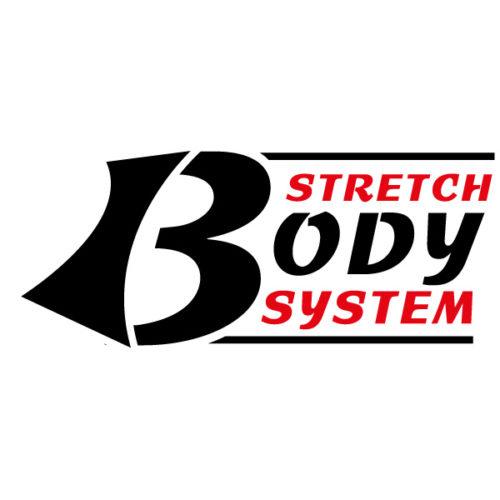 Stretch body system